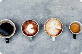 molino de café krups para 2 y hasta 12 taza de café